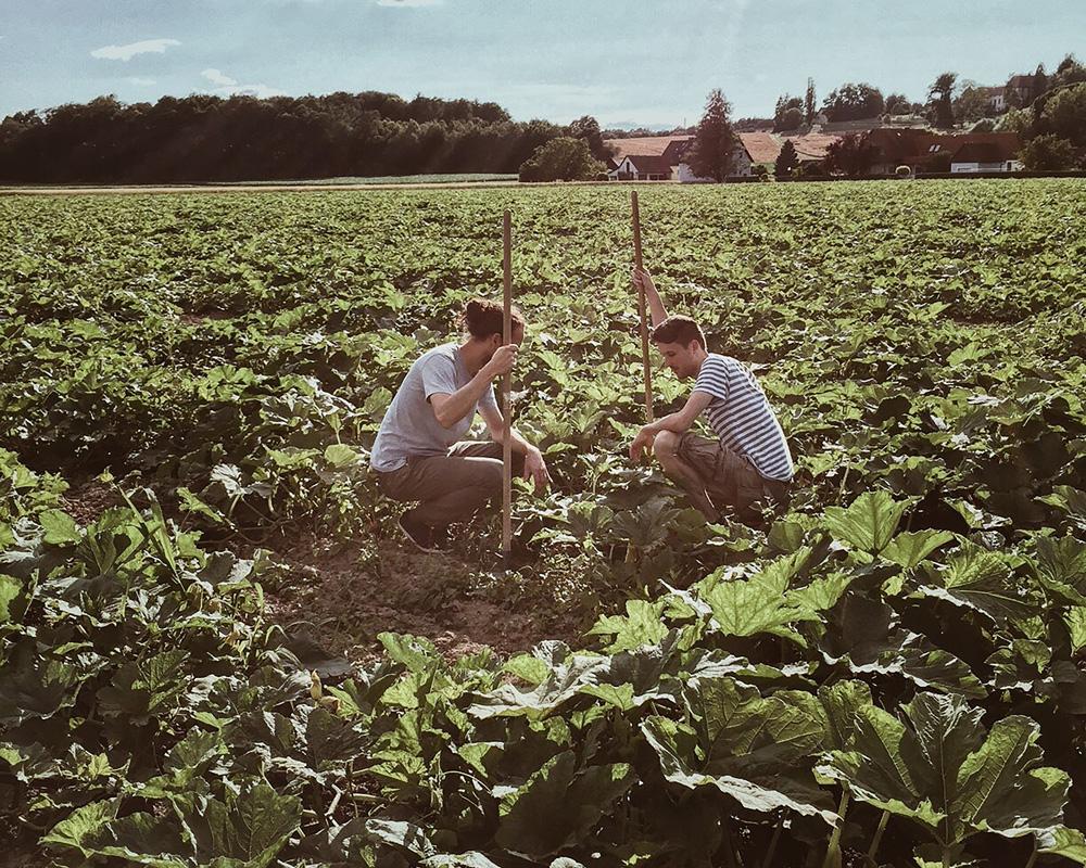 Foto von Rainer und Franzi Schalk im Kürbisfeld